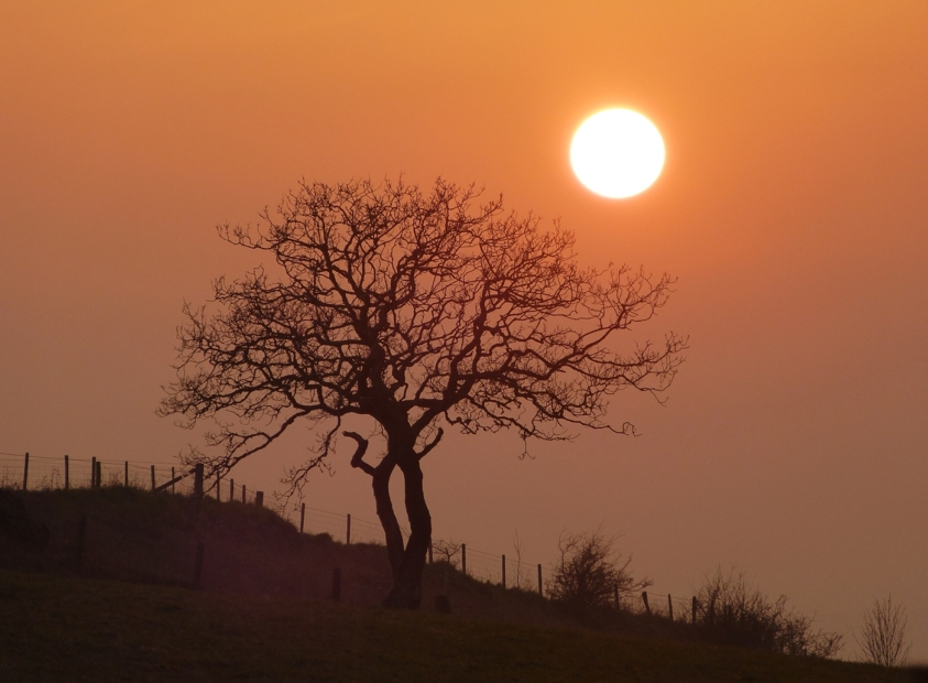 Sunset, Gopa Hill