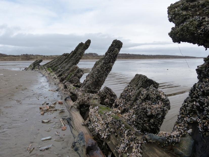 Shipwreck, Cefn Sidan