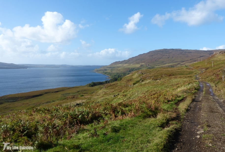 Walk to MacCulloch's Fossil Tree, Isle of Mull