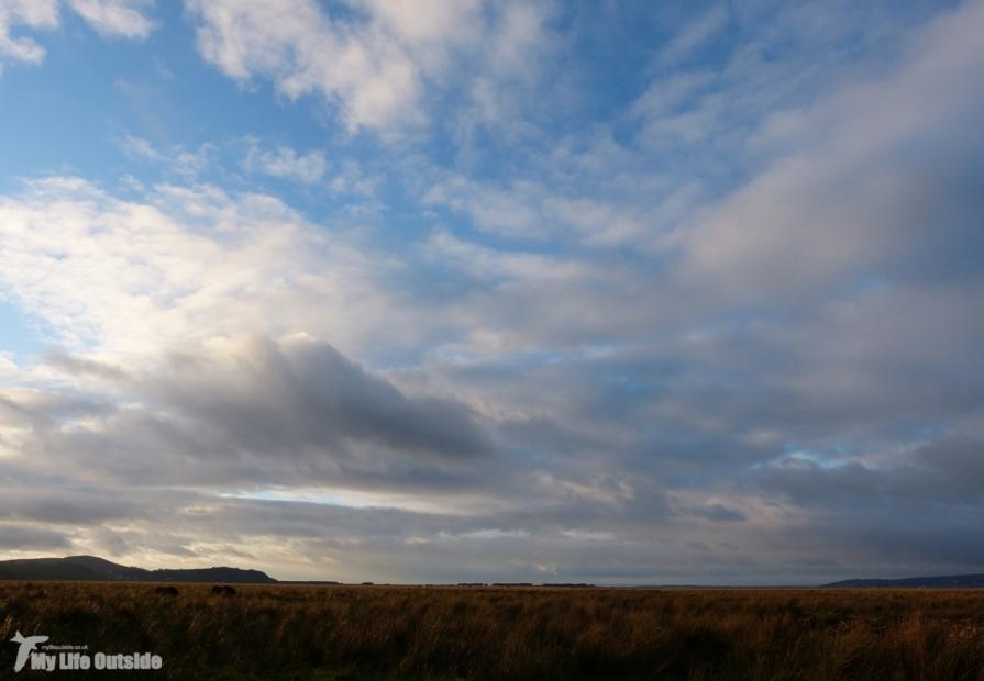 Llanrhidian Marsh, Gower