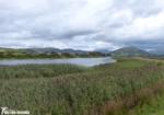 Broad Water, Tywyn