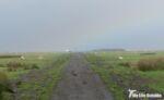 Causeway, Llanrhidian Marsh