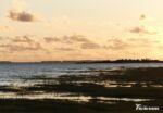 Burry Inlet Sunset